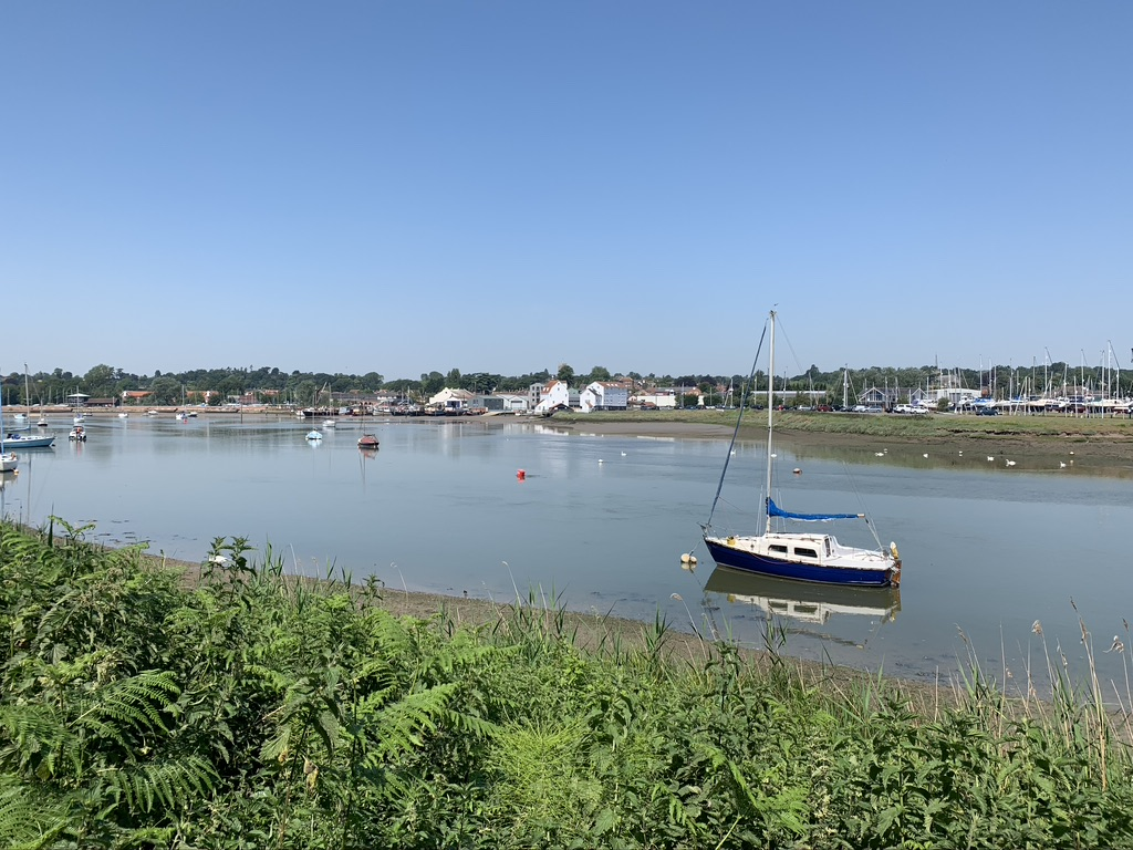 Ferry Cliff Woods with views of the River Deben and blue skies