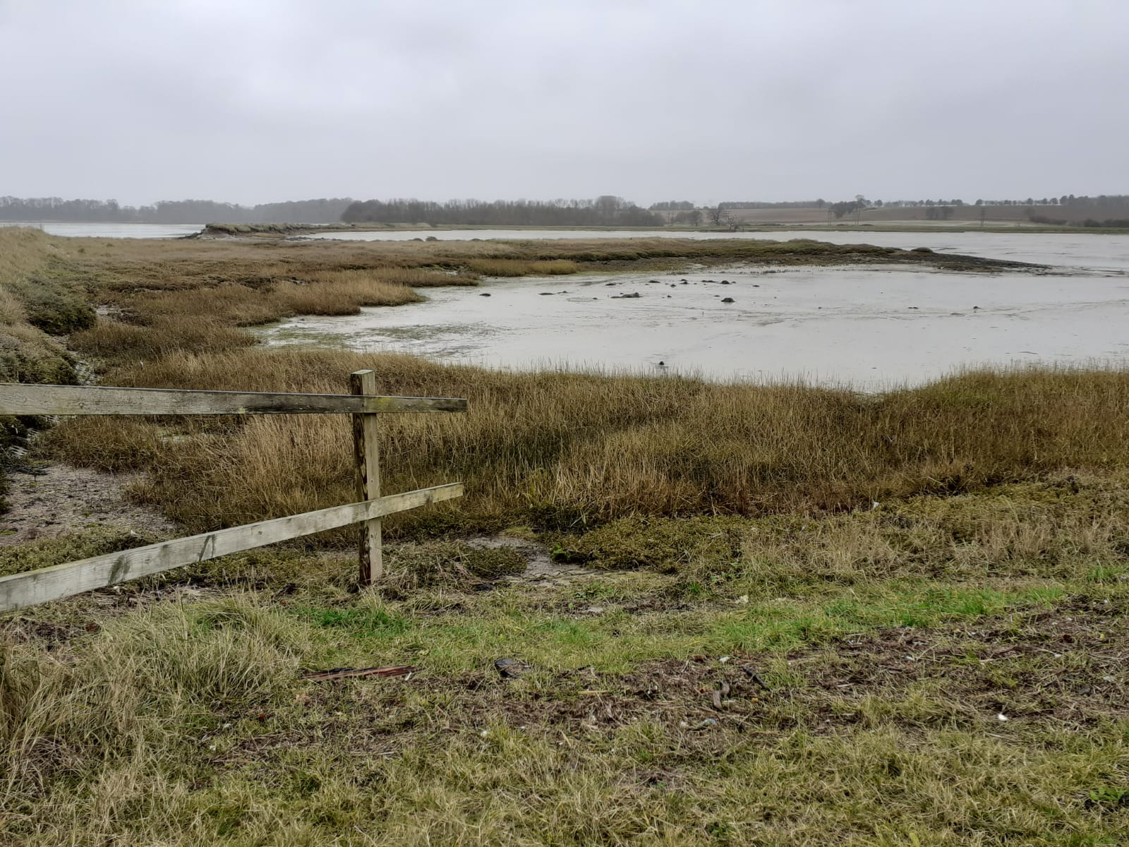 Trimley Marshes showing the River Orwell and grey skies