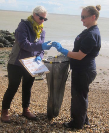 People picking up litter at a Beach Watch event