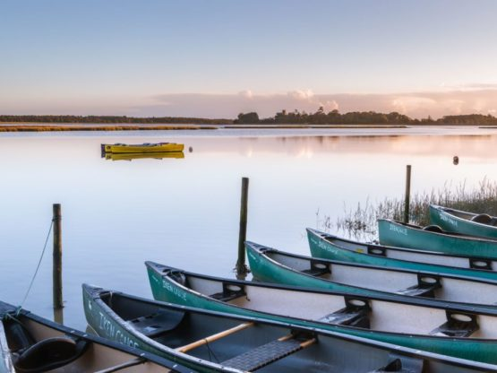 A photo of canoes sat next to a river with a blue sky