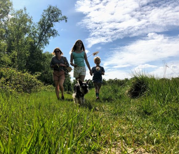 Family and dog walking in field