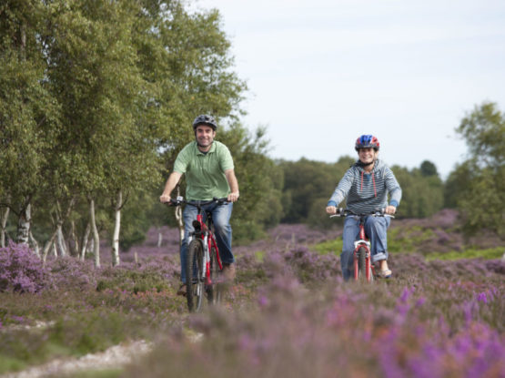 Couple cycling in the Heathland
