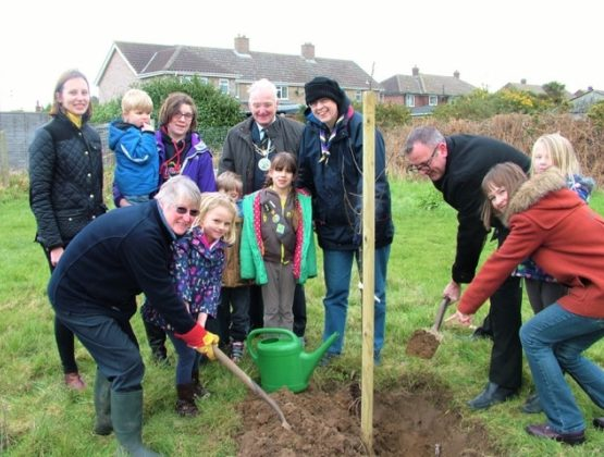 Group of people after planting tree