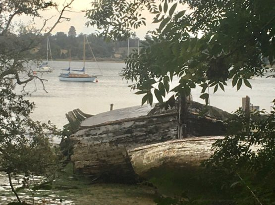 A photo of a shipwreck in the river