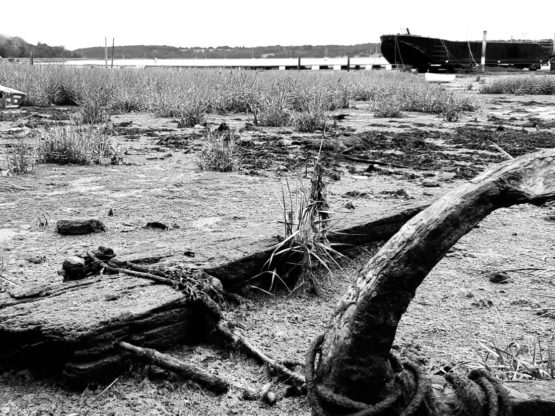 A black and white photo of an anchor and shipwreck in a river