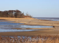Landscape view of Covehithe beach